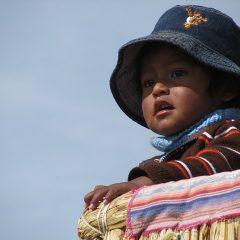 Creeer je eigen Peru Familiereis