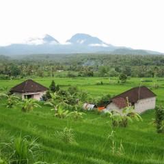 Indonesie: Bali met de kids: 20 dagen