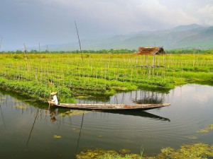 Myanmar drijvende tuin