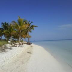 Cuba Familiereis: Swingen op de Caribbean