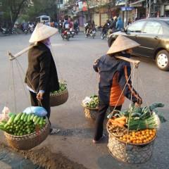 Vietnam met de kids: 22 dagen